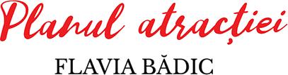 Planul atracției de Flavia Bădic-Planul atracției